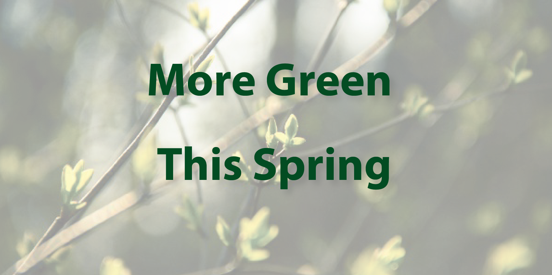 More green this spring mbha for Laura dunn minimalist living now