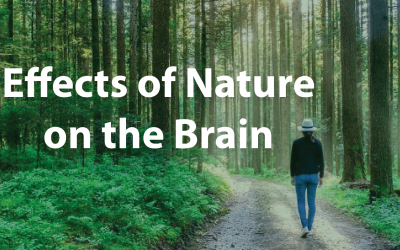 Effects of Nature on the Brain